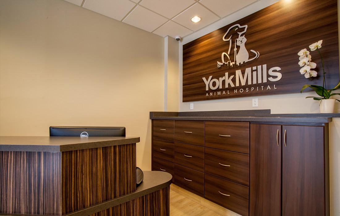 York Mills Animal Hospital